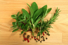 Épices d'herbes Photographie stock