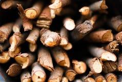 Pices de bois Photographie stock