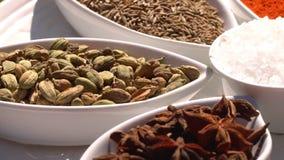 ?pices Divers Indien L'épice et les herbes tournent Assortiment des assaisonnements, condiments Cuisson des ingr?dients, saveur 4 banque de vidéos
