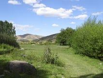 Picheira - ett ganstersberättelseställe Fotografering för Bildbyråer