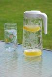 Pichet de l'eau Photographie stock libre de droits