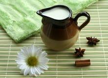 pichet de lait de vert de came de fond Image stock