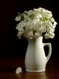 Pichet et fleurs blancs Image libre de droits