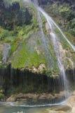 Pichon каскада Стоковое Изображение