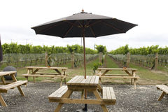 Picinic tables in vineyard Stock Photos