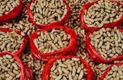 Pick me Nuts royalty free stock photos