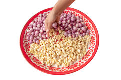 Pick Red onion and garlic in salver. Cooking Royalty Free Stock Photo