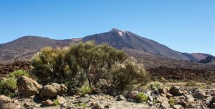 Pick of the Teide volcano in Tenerife. Pico del Teide in Tenerife, Islas Canarias, Spain. View from the down royalty free stock images