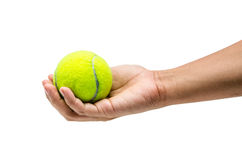 Pick a tennis ball Stock Image