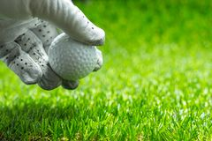 Pick up a golf ball on green grass royalty free stock photos