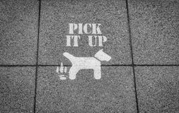 Pick It Up. Sign Set in a Pavement for Dog Walkers royalty free stock image