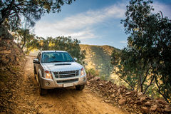 Pick-up truck on dirt road