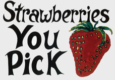 Pick your own. A self picking strawberry sign Stock Photography