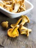 Picked mushrooms Stock Photo