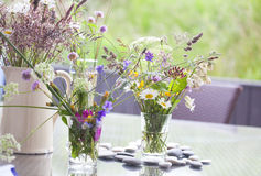Picked wild flowers Royalty Free Stock Photo