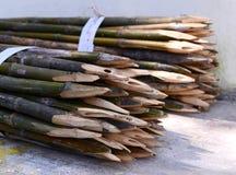 Picket bamboo fence Royalty Free Stock Photos