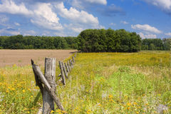 Picket fence. In the field Stock Image