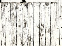 Picket fence. White picket fence Stock Photography