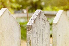 Picket Fence. View of a white weathered picket fence Royalty Free Stock Image