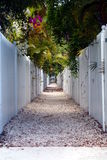 Picket Fence Walkway Royalty Free Stock Photo