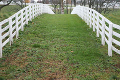 Picket or horse fence Royalty Free Stock Image