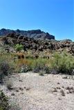 Boyce Thompson Arboretum State Park, Superior, Arizona United States. Picket Post Mountain, Ayer Lake and desert vegetation at Boyce Thompson Arboretum State Royalty Free Stock Images