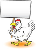 Picketing Chicken Stock Photography