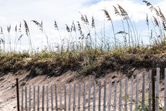 Pickett Fence with Beach Grass and Dunes at Sandbridge Stock Photo