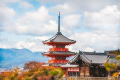 View of Kiyomizu-dera main temple buildings filtered from autumn leaves in Kyoto, Japan. Picking through the autumn leaves to enjoy the beautiful view of the stock images