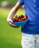 Picking Berries. Photo of child resting bowl full of fresh strawberries on her hip stock photography
