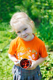 Picking of  berry Stock Image