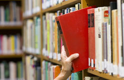 Woman Reaches out Picking a Book Library Shelf Stock Photos
