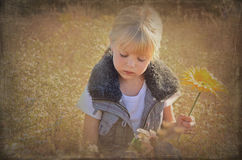 Picking flowers Royalty Free Stock Image