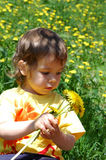 Picking flowers. Girls picking yellow flowers on a summer day Royalty Free Stock Photos