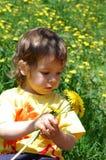 Picking flowers royalty free stock photos