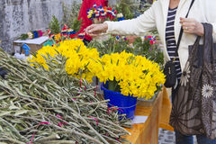Picking flowers on market Stock Photos