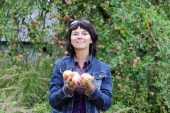Picking fruit Stock Photo