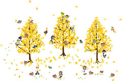 Picking ginkgo nuts. Royalty Free Stock Photos