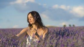 Picking lavender Royalty Free Stock Image