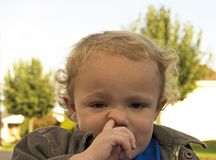 Picking Nose. Young boy with finger up his nose Royalty Free Stock Images