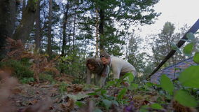Picking something up from the floor in the forest. Slow motion footage of a couple picking something fro the floor in woods while walking in the fall forest stock video footage