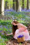 Picking springtime wildflowers Stock Photography