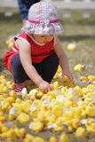 Picking toy ducks. Portrait of a cute little baby girl picking yellow rubber toy ducks in the nursery plauground stock image