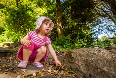 Picking up leaves Royalty Free Stock Photography