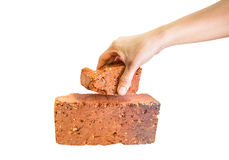 Picking Up Red Bricks III Royalty Free Stock Photo