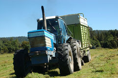 Picking up silage Stock Images