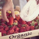 Picking up some fresh strawberries on a market Royalty Free Stock Image