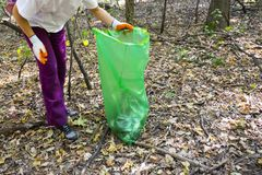 Picking up trash in the forest. Ecology person cleaning the park. Unrecognizable people stock image