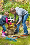 Picking up  yellow leaves Stock Photos