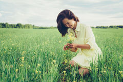 Picking yellow wildflowers Royalty Free Stock Photography